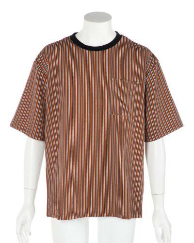 半袖ストライプTシャツ(ブラウン)