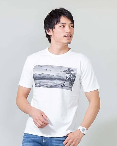 プリント半袖Tシャツ(ホワイト)